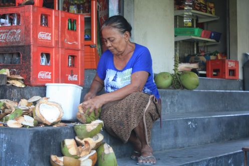 Coconut vendor